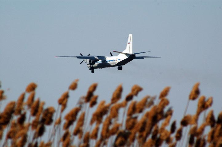 Отдельная смешанная авиационная эскадрилья 33-й РА